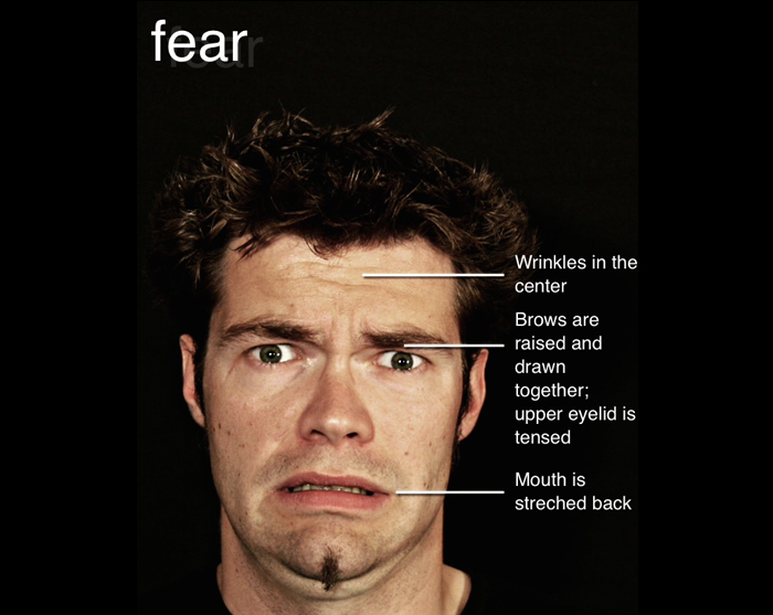 Micro Expression The Facial Expressions Of The 7 Basic Emotions At